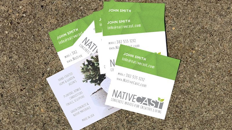 Blue Blaze branded print collateral business cards for Native Cast