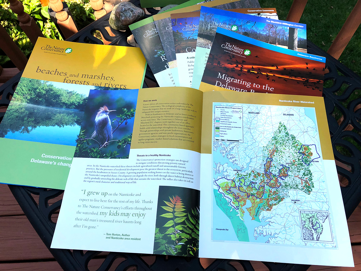 Blue Blaze custom designed print collateral for The Nature Conservancy