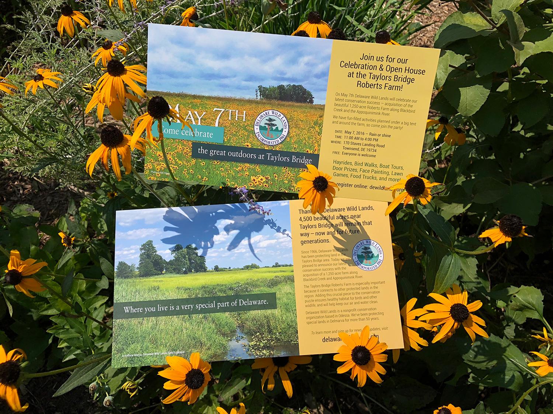 Delaware Wild Lands print materials