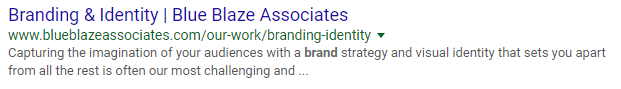 Blue Blaze Associates Title Tag in SERP result